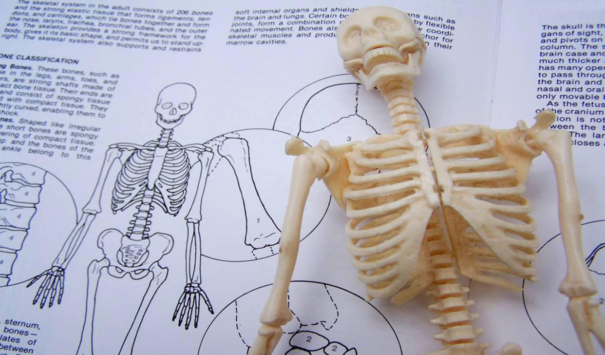 Medizinische Grundlagen Aufschulung Visana Bodyfeet
